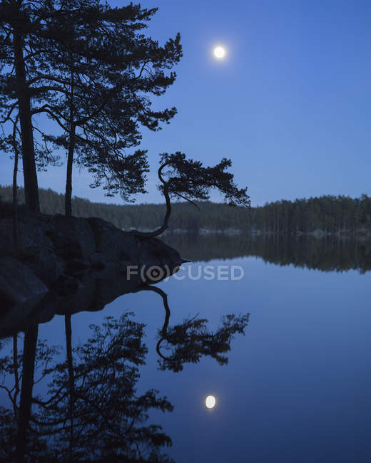 Lake with forest under blue sky with moon — Stock Photo