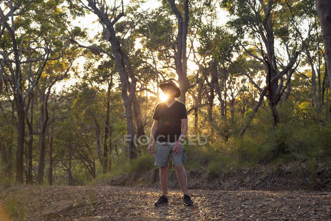 Senior tourist in forest at sunset, lens flare — Stock Photo