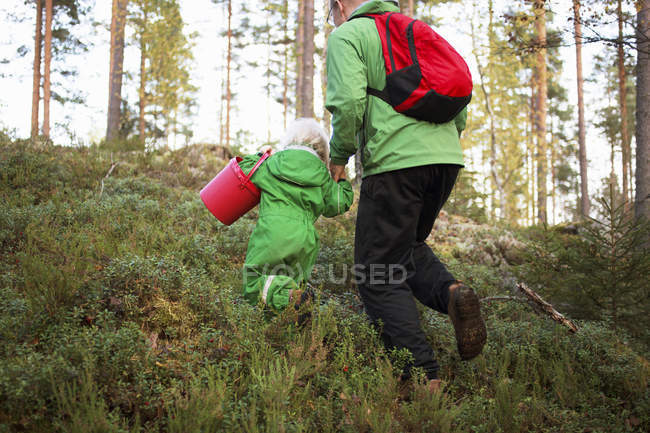 Vista posteriore del padre con figlia nella foresta di pini — Foto stock
