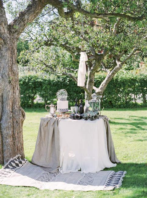 Vista frontal da mesa e o tapete debaixo de árvores — Fotografia de Stock
