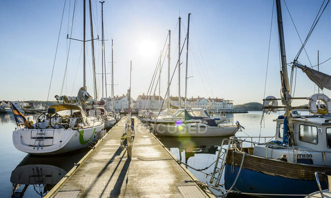 Front view of yachts anchored in harbor — Stock Photo