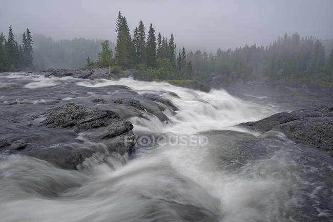 Bewegung verwischt Ristafallet Wasserfall Wasser und grüne Bäume — Stockfoto