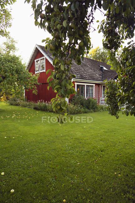 Piccola casa rossa e giardino interno con alberi verdi — Foto stock