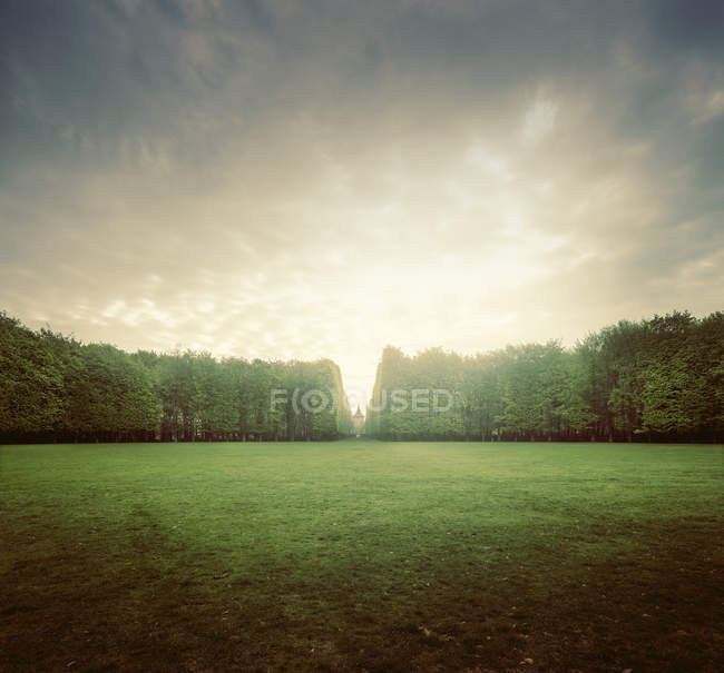 Prado verde e árvores sob o céu nublado — Fotografia de Stock
