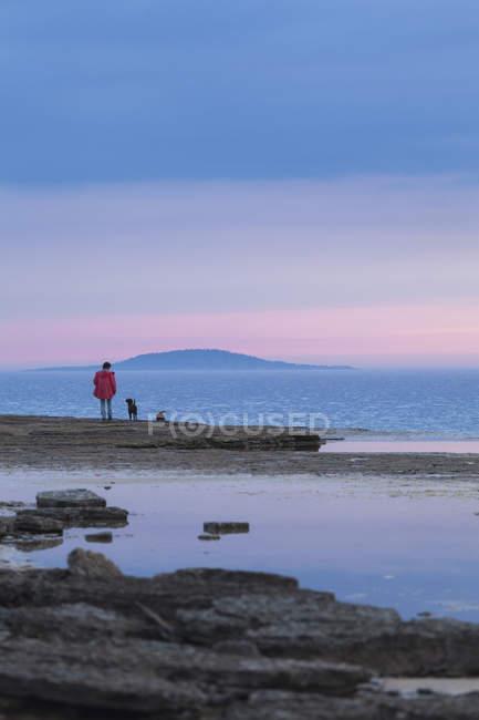 Frau mit Hund Stand am Ufer, Königreich Schweden — Stockfoto