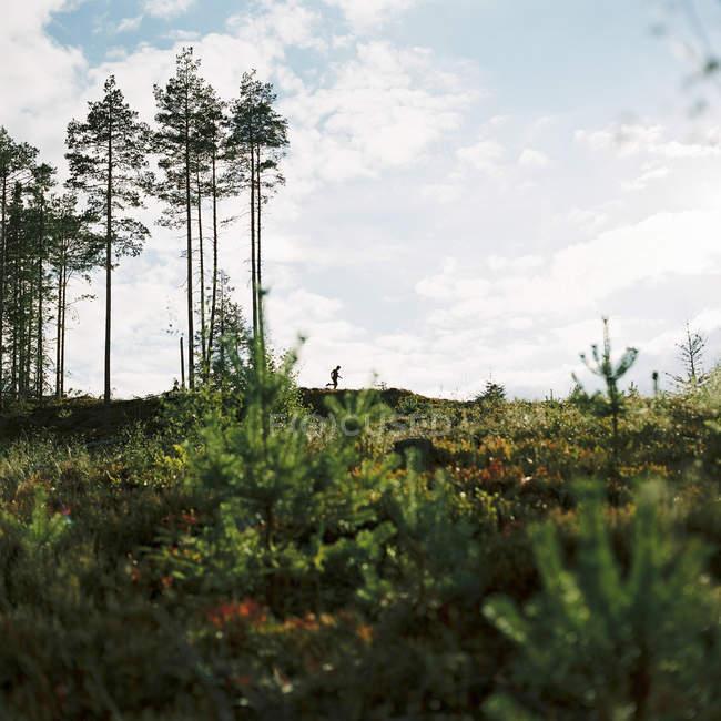 Silhueta de homem correndo em bosque sob céu nublado — Fotografia de Stock