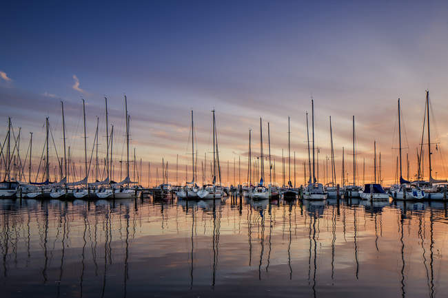 Front view of yachts in marina at sunset — Stock Photo