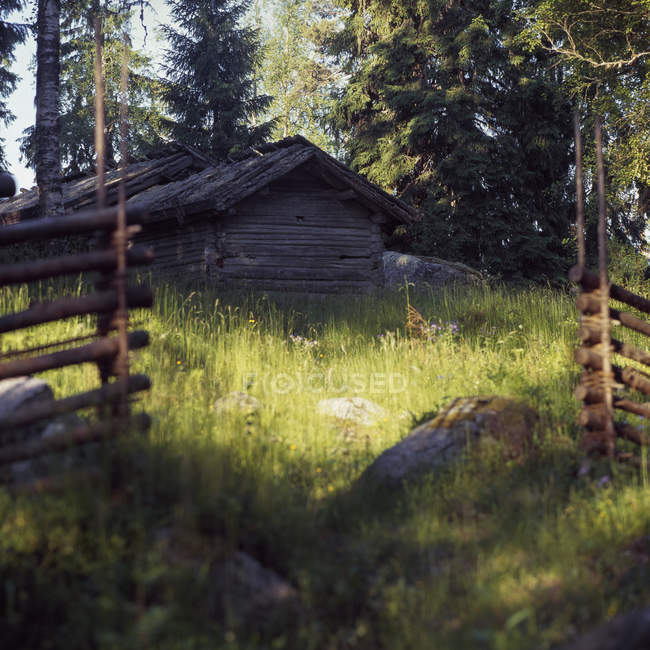 Front view of wooden cottage in forest — Fotografia de Stock