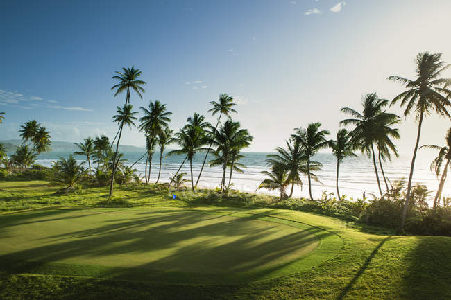 View of golf course with palms at seaside — Stock Photo
