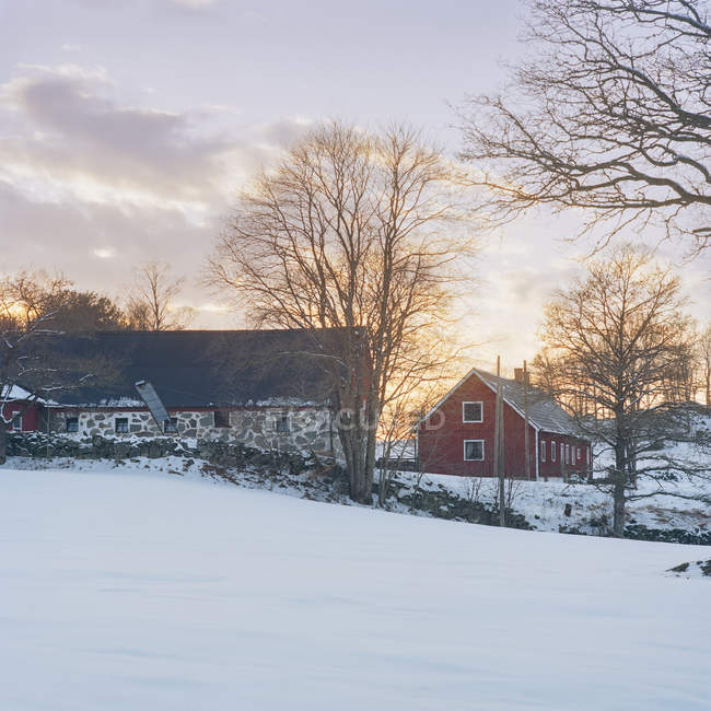 Houses on snowcapped hill with cloudy sunset sky - foto de stock