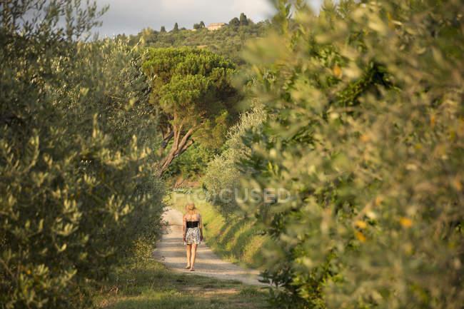 Donna che cammina lungo la strada in vigna — Foto stock