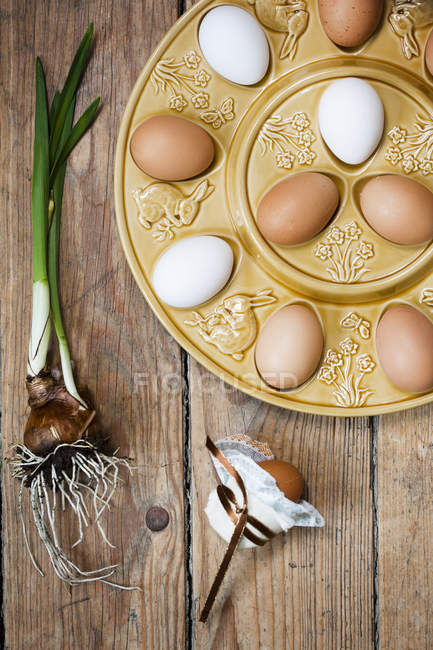 High angle view of eggs on plate at spring — Stock Photo