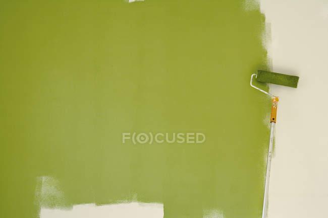 Verde Pistacchio Foto Stock Immagini Royalty Free Focused