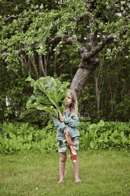 Jeune fille debout sur l'herbe et la tenue de rhubarbe grandes feuilles — Photo de stock