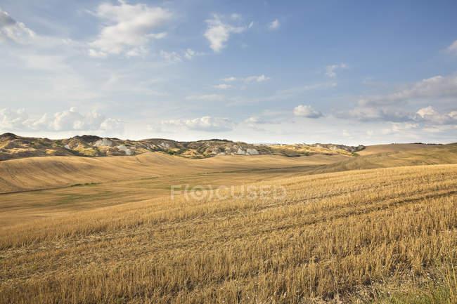 Пейзажний вид сухий поля під Синє небо — стокове фото