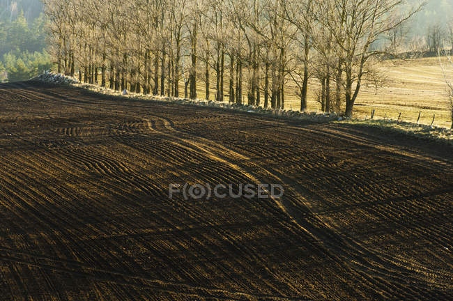 Autumn landscape with freshly ploughed field — Stock Photo