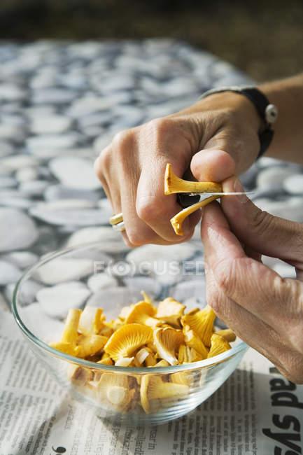 Mani maschili affettare funghi finferli con coltello — Foto stock