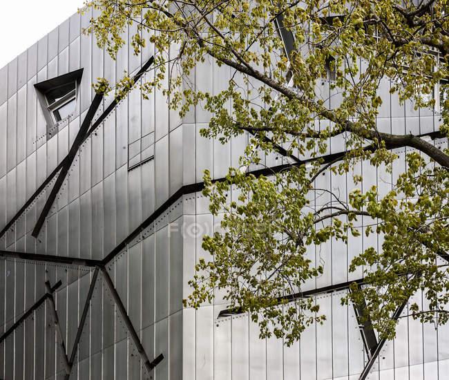 Вид на фасад Еврейского музея через ветви деревьев, Берлин — стоковое фото