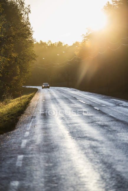 Front view of car along sunlit country road — Stockfoto
