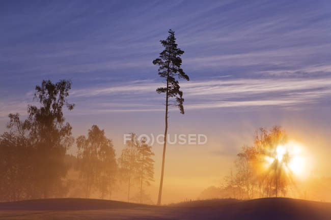 Scenic view of sunset at Hills Golf Club — Stock Photo
