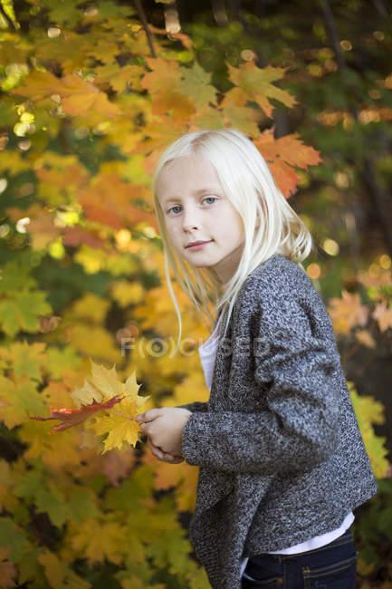Retrato de chica rubia con hojas de arce amarillo - foto de stock