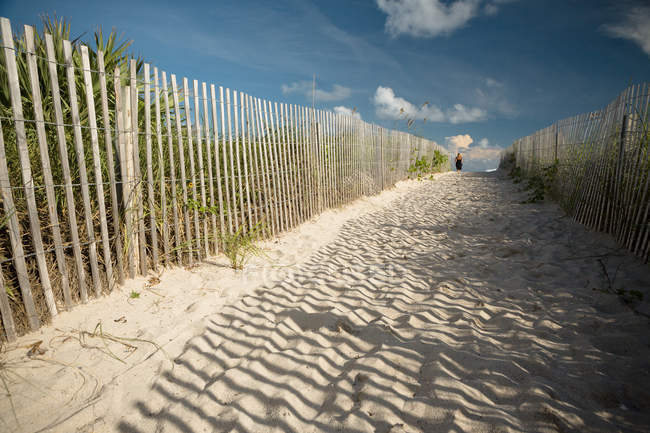 Sandy footpath on beach at sunny day in Miami — Stock Photo