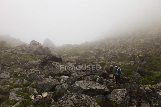 Туристи походи в туман на Лофотенских — стокове фото