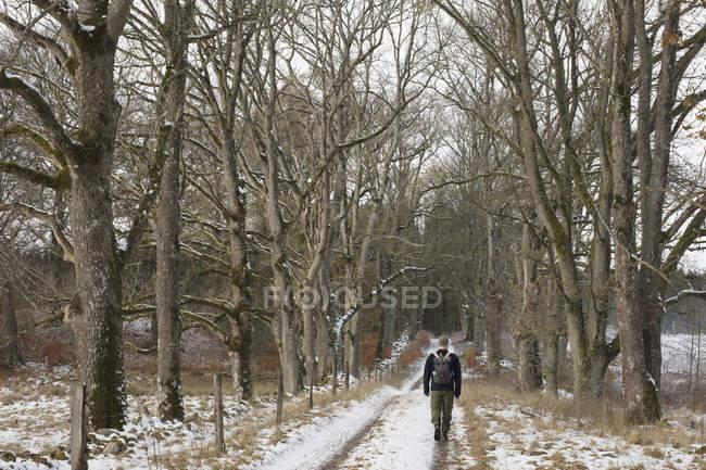 Vista posteriore dell'uomo che cammina lungo il sentiero innevato — Foto stock