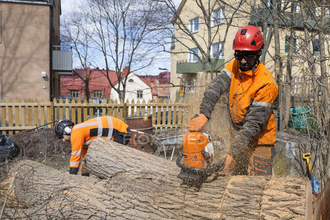 Arborists in protective workwear cutting logs against buildings exterior — Stock Photo