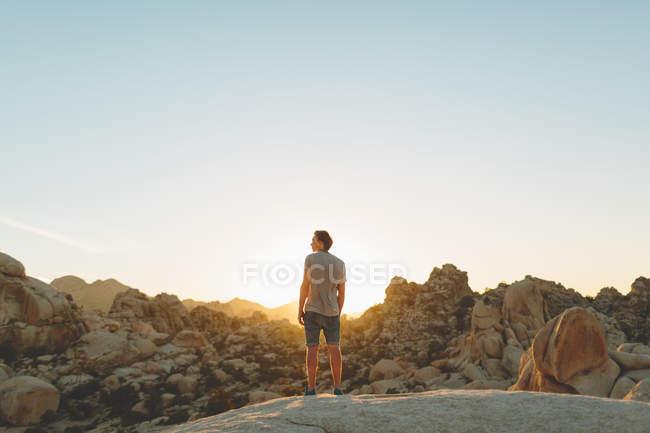 Вид сзади человека, глядя на представление в Дерево Джошуа Национальный парк — стоковое фото