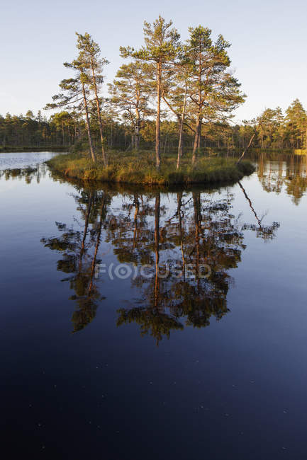 Knuthojdsmossen lake with small island and trees — Stock Photo