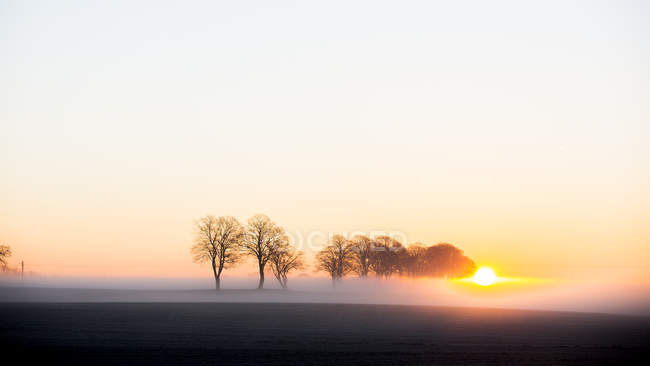Misty landscape with rising sun in sky — Stock Photo
