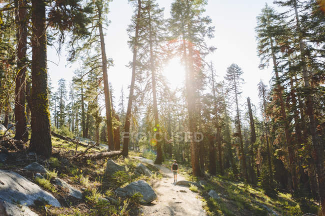 Senderismo en Taft Point Trail hombre - foto de stock