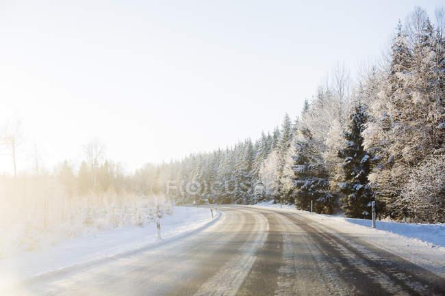 Сельская дорога в заснеженном пейзаже — стоковое фото