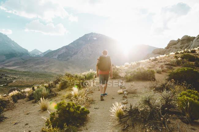 Человек, туризм в стране Пахта, вид сзади — стоковое фото