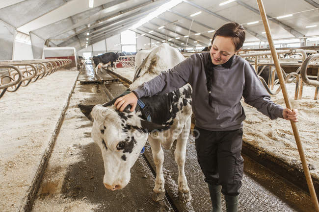 Female dairy farmer in casual clothing at work — Stock Photo