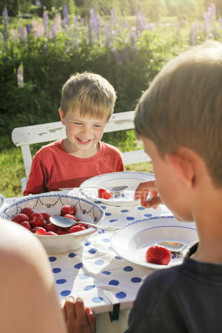 Brothers eating strawberries in garden, selective focus — Stock Photo