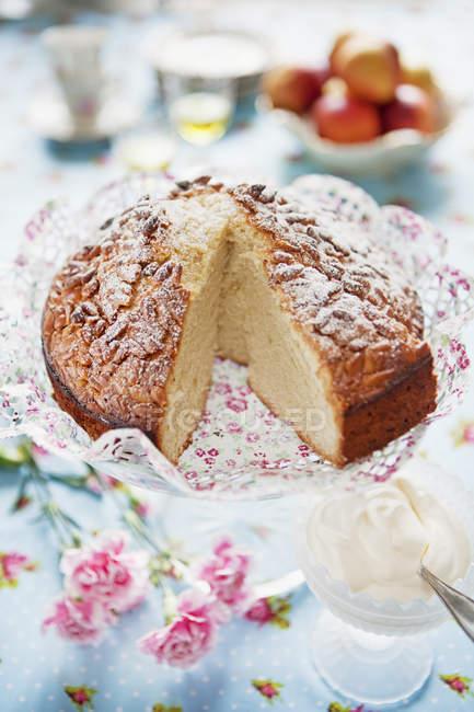 Торт з кедровими горішками, зосередити увагу на передньому плані — стокове фото
