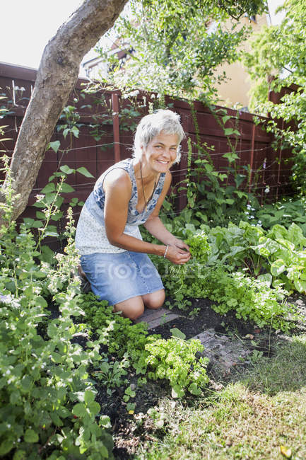 Ritratto della donna matura di giardinaggio e rivolto verso l'obiettivo — Foto stock