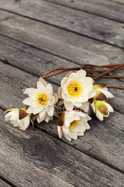 Flowers lying on wooden jetty, selective focus — Stock Photo