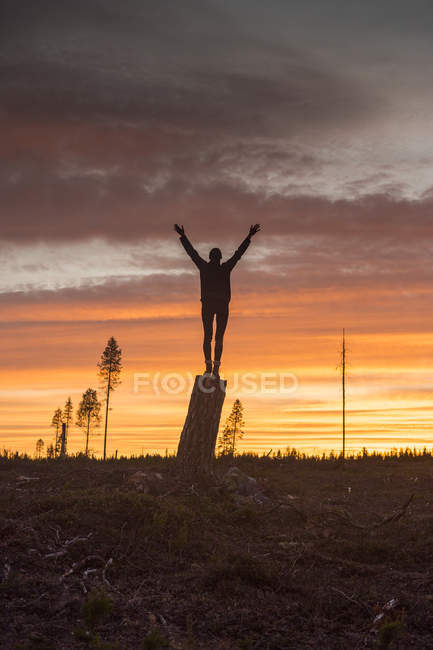 Женщина, стоящая на пне на закате — стоковое фото