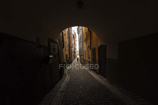 View of cobblestone tunnel, diminishing perspective — Stock Photo