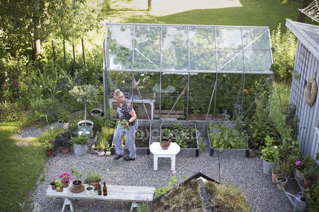 Vista elevada de jardinagem mulher madura — Fotografia de Stock