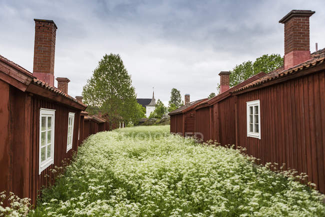 Wooden houses under overcast sky in north of Sweden — Stock Photo