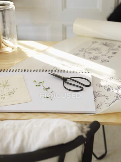 Erhöhten Blick auf Schere auf Tisch, differenzielle Fokus — Stockfoto