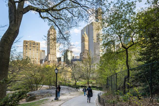 Alberi a Central Park con grattacieli sullo sfondo — Foto stock