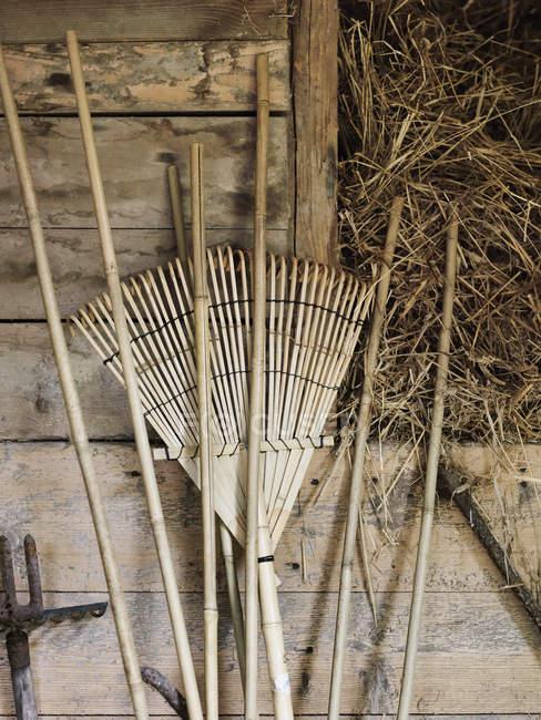 Primer plano de herramientas de jardín sobre fondo de madera - foto de stock