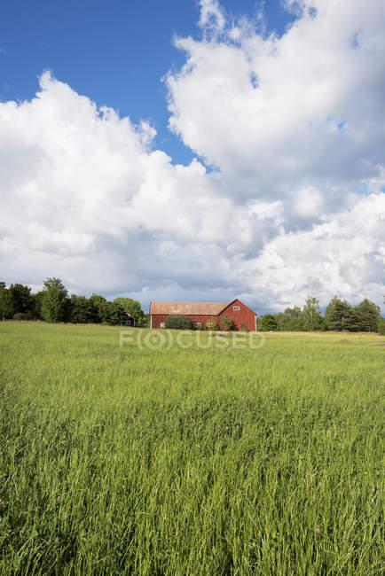 Vue panoramique sur les terres agricoles jusqu'à la grange rouge — Photo de stock