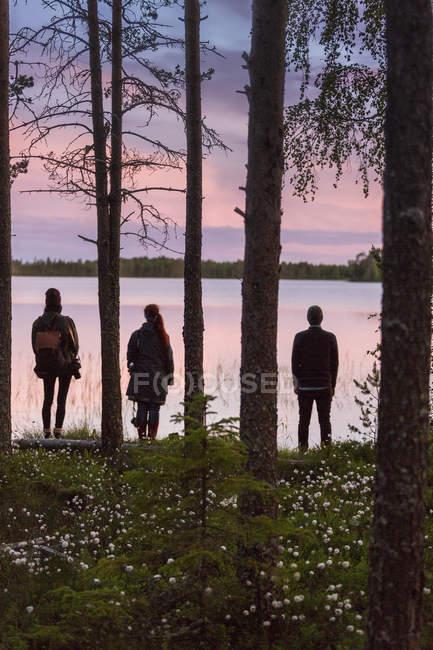 Persone in piedi tra gli alberi, attenzione selettiva — Foto stock