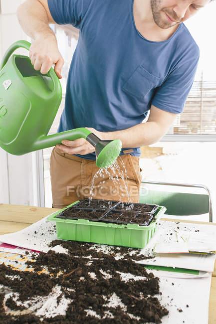 Hombre de regar las plantas, enfoque selectivo - foto de stock